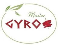 Master GYROS